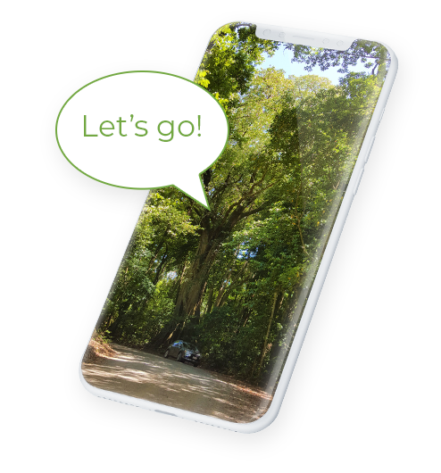 Mock up phone saying 'Let's go'